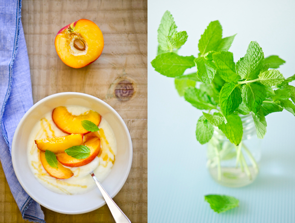 © 2011 Viviane Perenyi Peach Yogurt & Mint