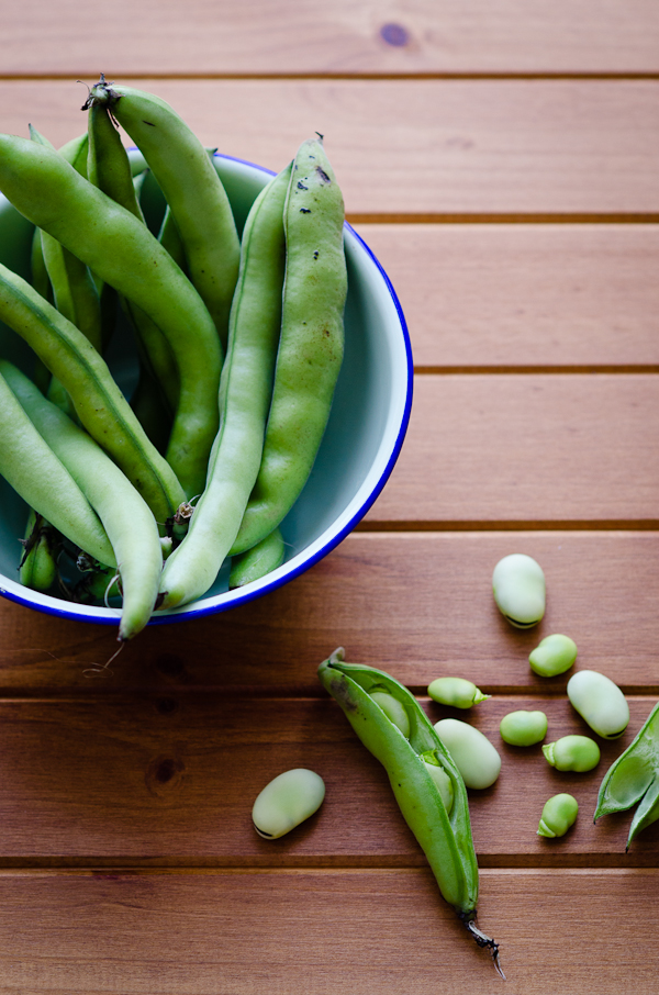 Broad Beans | At Down Under | Viviane Perenyi